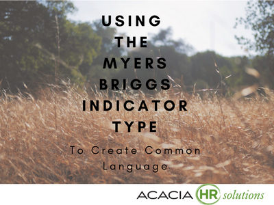 The Myers and Briggs MBTI Personality Types Indicator Assessment Test